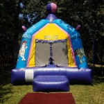pretty carousel bounce house rental at event on the grass front view