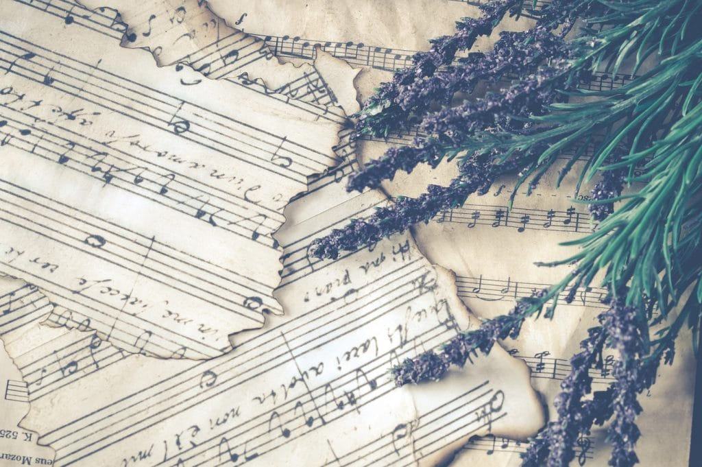 Lavender on burnt music pages