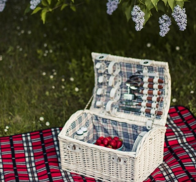 white picnic basket on a red plaid blanket on grass outside under greenery